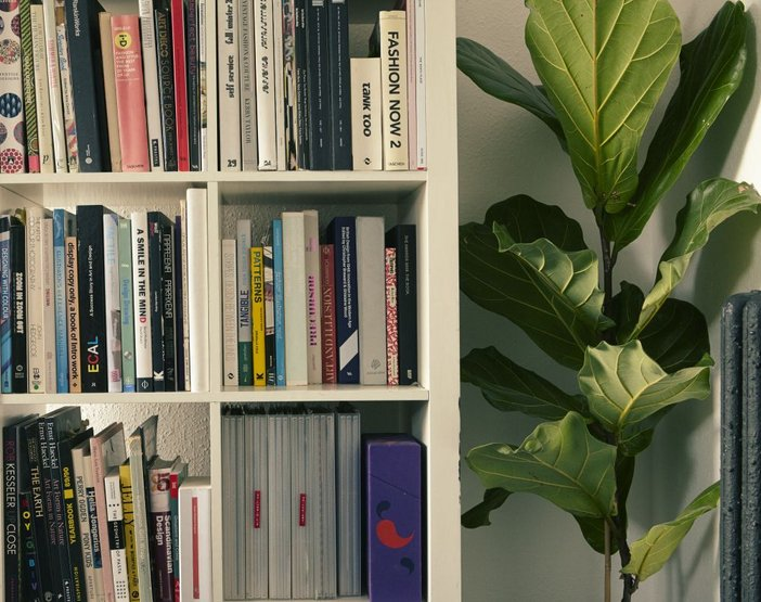 Shelves of reference books in the Patternity studio