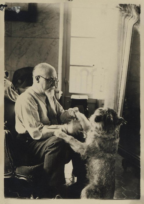 Matisse and animals jumping dog