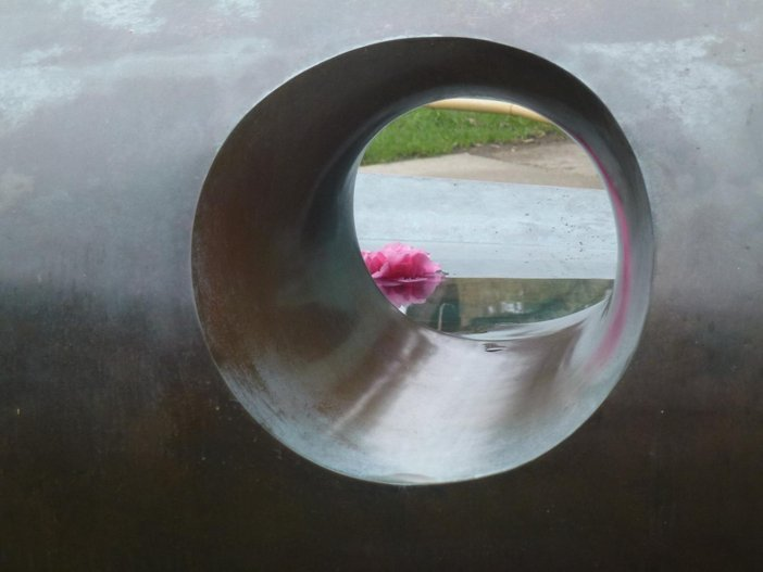 Close up photograph looking through the hole in the Hepworth sculpture which shoes a pink flower