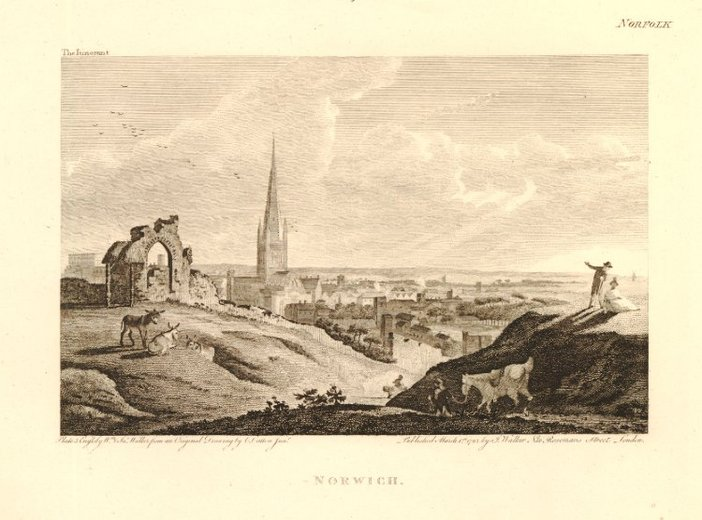 John Walker after Charles Catton junior, Norwich, Engraving from The Itinerant, published 1 March 1792