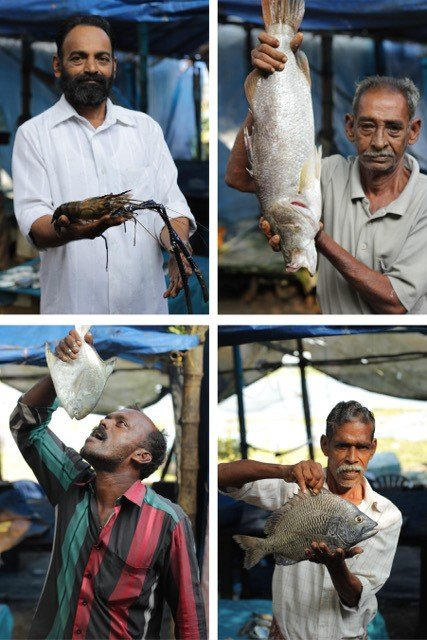 Four photographs of fishermen