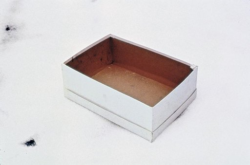 Gabriel Orozco Empty Shoe Box 1993 photograph of a white empty shoe box positioned on the floor