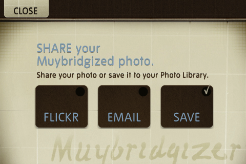 Muybridgizer 6