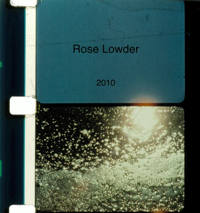 Rose Lowder, Jardin du sel, 2011 Film still