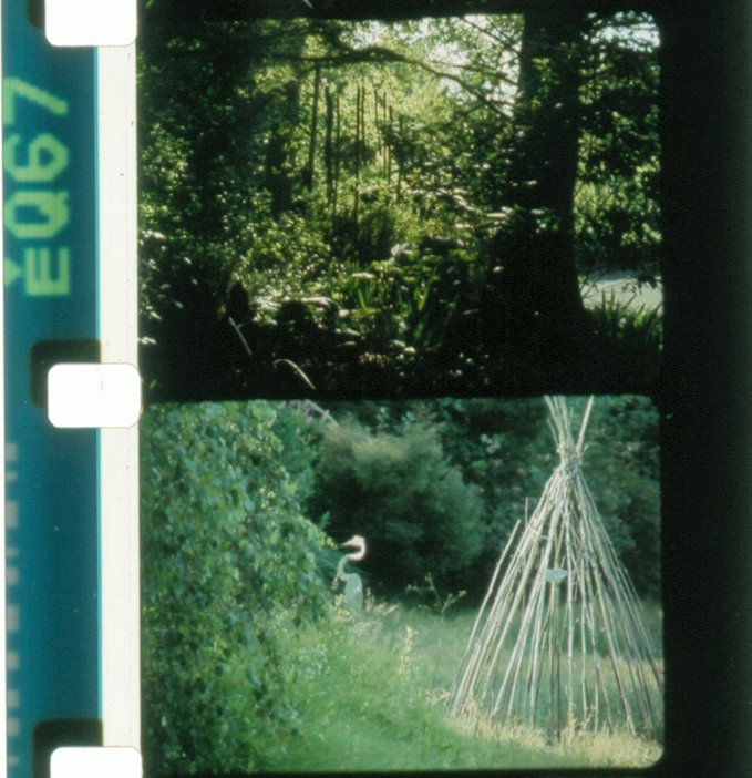 Rose Lowder, Jardins du Marais 2010 Film still
