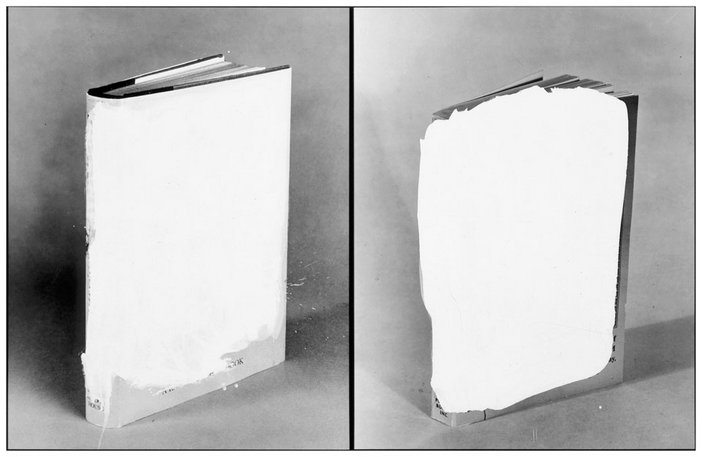John Baldessari Two Voided Blocks 1990
