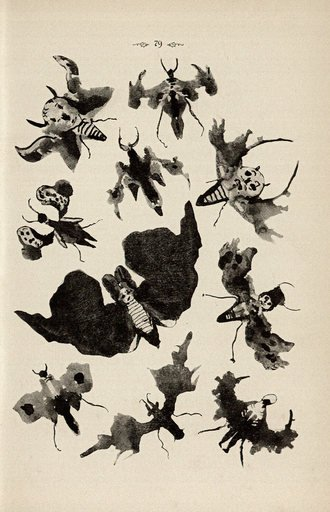 Justinus Kerner Klecksographie 1890 winged creatures made from black ink blots