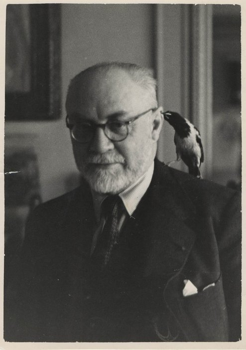 Matisse and animals small bird on shoulder