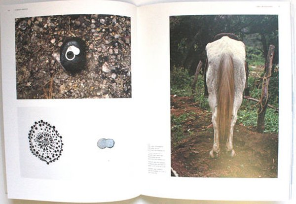 Two spreads from Gabriel Orozco book GO by Jessica Morgan 2