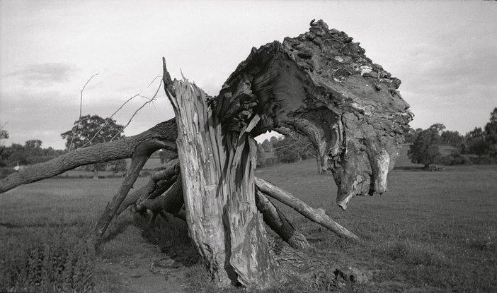 Paul Nash Monster Field 1938