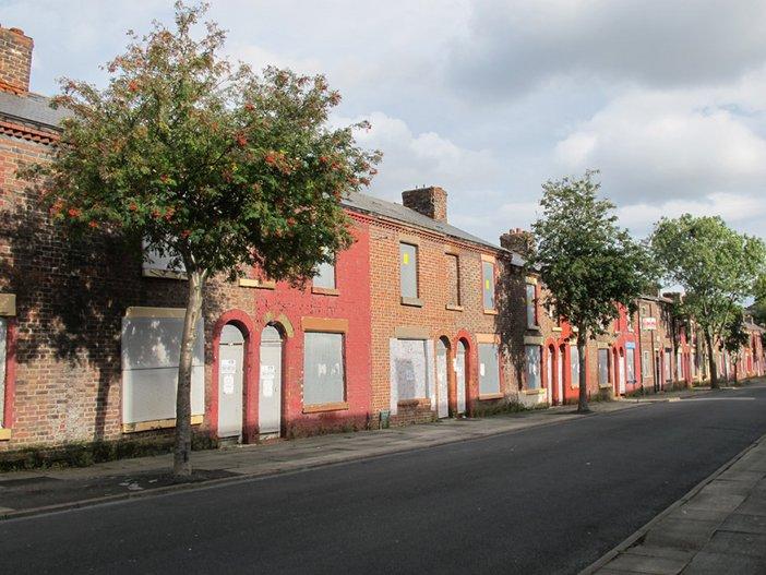 Rowan Trees on Madryn Street, Liverpool