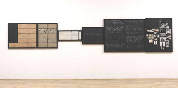 Vito Acconci Sonnabend Show Jan 72: Archives. Transference Zone 1972