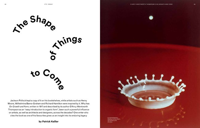 Tate Etc. issue 30 (Summer 2014) - On Growth and Form