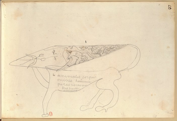 Spirit drawing by Victor Hugo, 26 July 1854