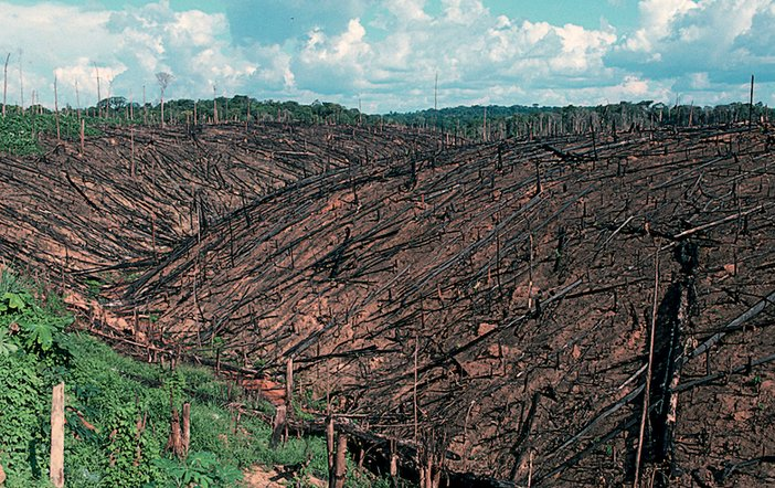 Photograph showing deforestation of the Amazon rainforest in Brazil