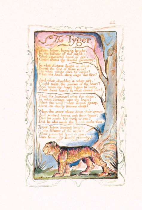 William Blake Songs of Innocence and Experience, The Tyger, Tate Publishing