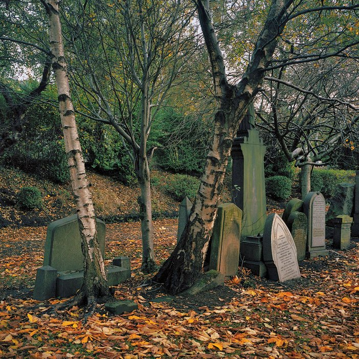Thomas Haywood The Necropolis Cemetery Glasgow 2005