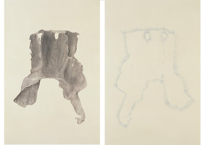 Trisha Donnelly Untitled (diptych) 2004