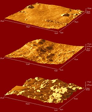 AFM images of Grumbacher titanium white paint: top: control; centre: water immersion; bottom: acetone immersion
