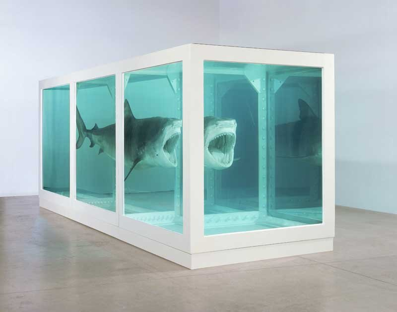 Damien Hirst The Physical Impossibility of Death in the Mind of Someone Living 1991 Glass, steel, silicon, formaldehyde and shark
