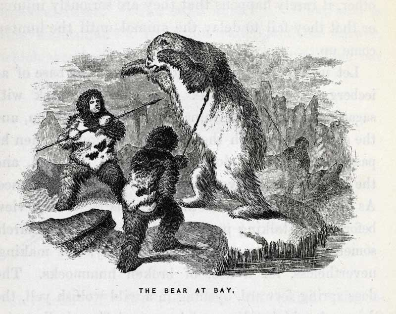 The Bear at Bay, Wood engraving from Elisha Kent Kane, Arctic Explorations in the Years 1853, '54, '55 1856