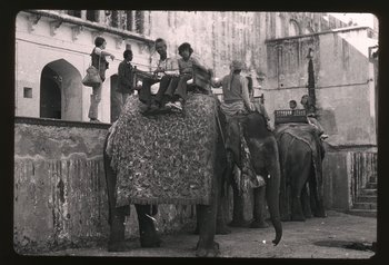 1974, Wifredo Lam in India, riding elephants