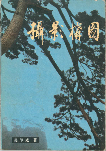 Wu Yinxian 120 Examples of Photographic Composition 1983 (cover)
