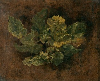 John Crome (attributed to) Study of Foliage undated