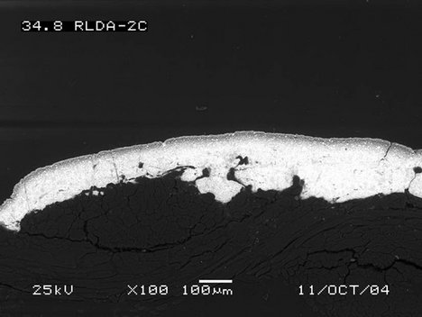 SEM-BSE of red lead (Fisher Scientific) paint showing (a) oil rich layer at the surface, paint applied over glue sized canvas