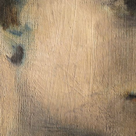 Detail of cheek of Girl in a Chemise c.1905