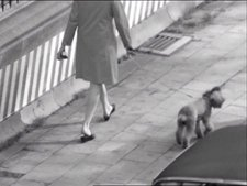 Jef Cornelis Still from an untitled film made for Zoeklicht op de culturele actualiteit 1971