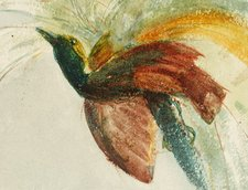 John William Inchbold Suggestive Study Paradise Head of a Girl and a Bird of Paradise 1864 1865 detail depicting a bird of paradise
