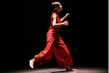 Rosemary Butcher, Hidden Voices 2004