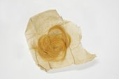 Tate Archive 40 | 1991 Eileen Mayo 'Lock of Golden Hair'