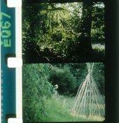 Rose Lowder: Filmmaking Frame by Frame