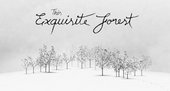 Explore 'This Exquisite Forest' with Google and Tate