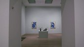 Matisse: First Look
