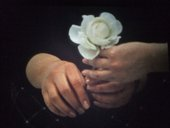 Introducing the intimate films of Ute Aurand