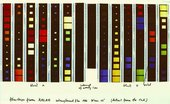 colour film strips presented vertically side by side