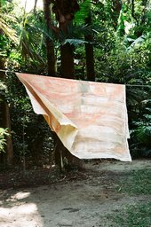 Photograph of Storage and working spaces in the two studios that Vivian Suter has built in the Guatemalan rainforest