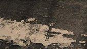 Still image of Peter Doig