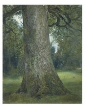 John Constable RA Study of the Trunk of an Elm Tree ca. 1821 Oil on paper © Victoria and Albert Museum, London.