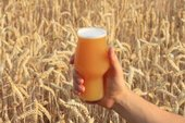 a pint of beer in front of a barley field