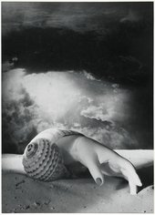 surreal black and white photograph of a hand coming out of a shell on a beach.