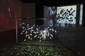 A metal construction hung with crystals, their shadows projected onto a screen behind