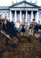 Joseph Beuys plants the first tree for his artwork 7000 Oaks