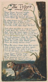 William Blake Songs of Experience, The Tyger