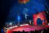 Romy Bauer centre stage at Circus Starr