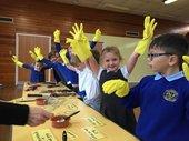 Gwaunmeisgyn Primary School, Lead Creative Schools Scheme