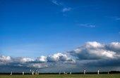 Chris Steele-Perkins, Cricket match, Hampshire, fromThe Pleasure Principle,1980–9